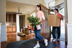 a man and a girl moving plants and carton inside the house | Xcellence Inspection Services | Door Chicago